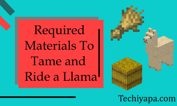 Required Materials to Tame and Ride a Llama