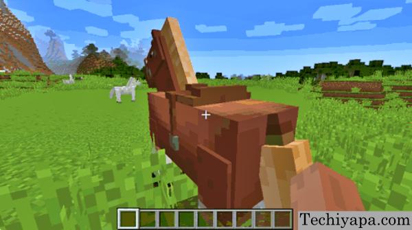 Horse earing saddle