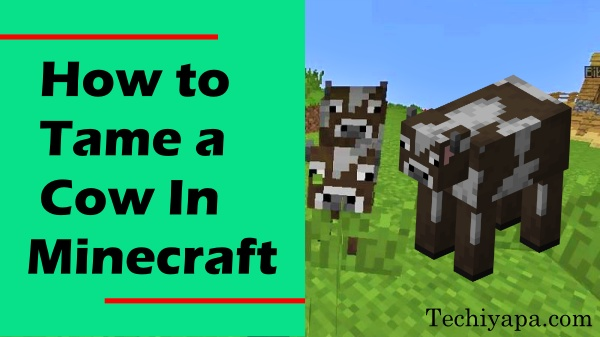 How to Tame a Cow In Minecraft